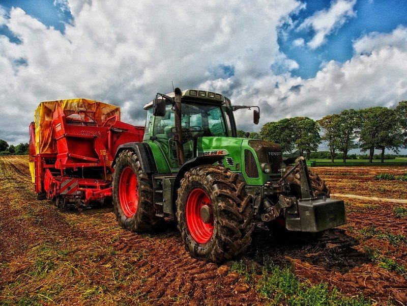 agricultura contabilitate